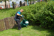 Ask Yourself These 4 Questions Before a Garden Landscaping Operation